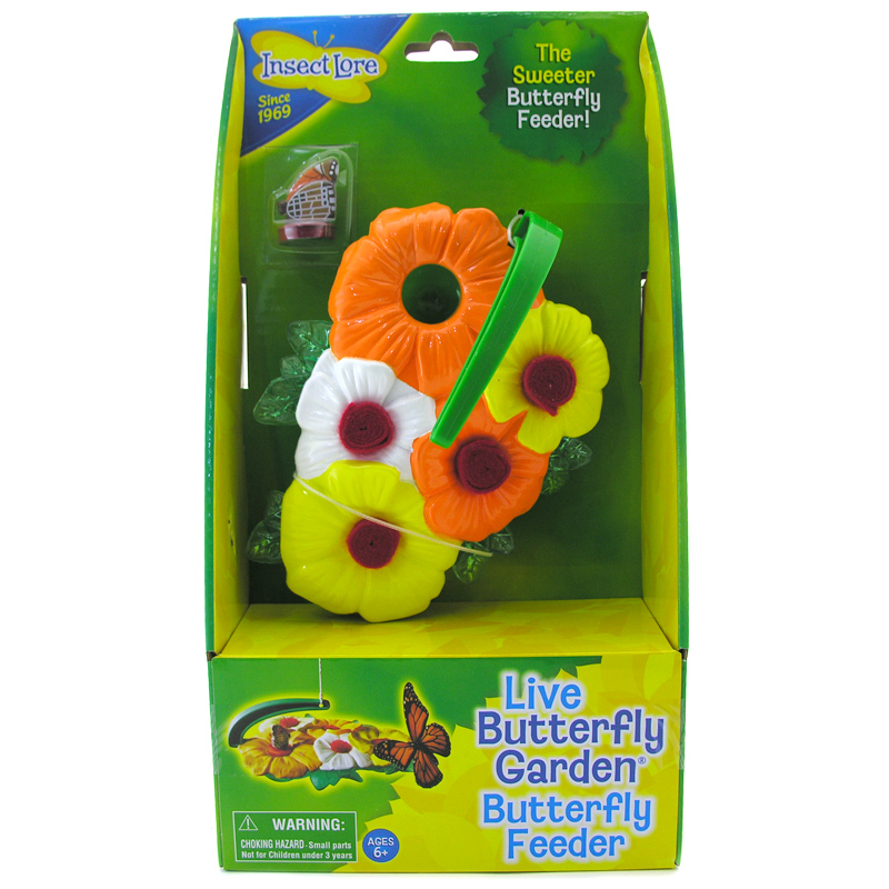 Butterfly Feeder from Insect Lore | WWSM